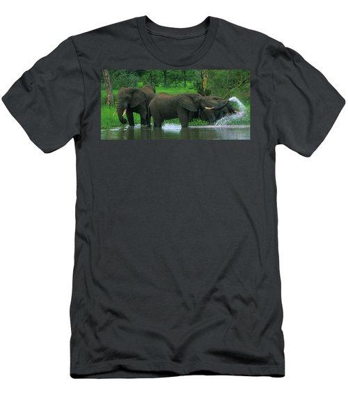 Elephant Shower Men's T-Shirt (Athletic Fit)