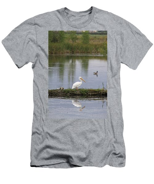 Pelican Reflection Men's T-Shirt (Athletic Fit)
