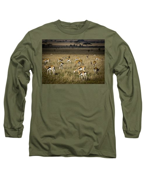 Herd Of Antelope Long Sleeve T-Shirt by Darcy Michaelchuk