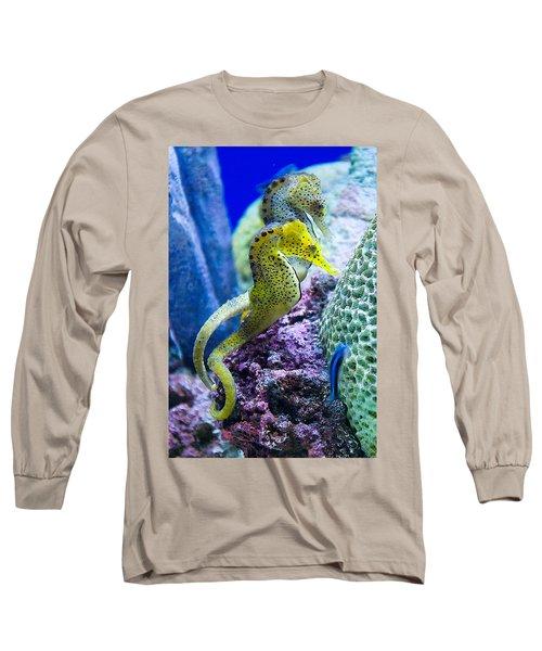 Colorful Seahorses Long Sleeve T-Shirt