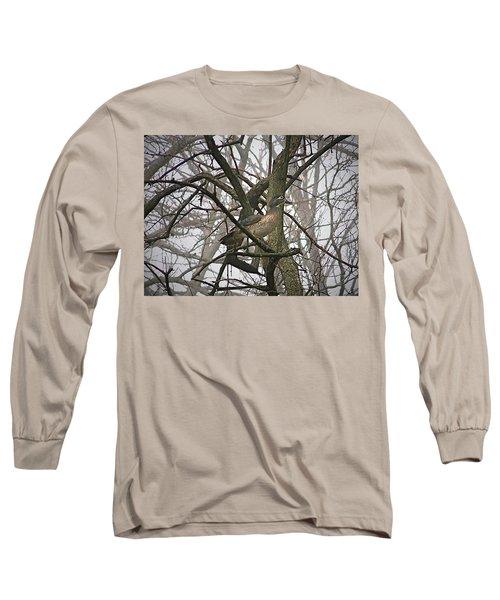 Wood Duck Long Sleeve T-Shirt by Sue Stefanowicz