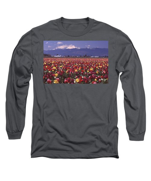 Field Of Tulips And Mount Baker Long Sleeve T-Shirt