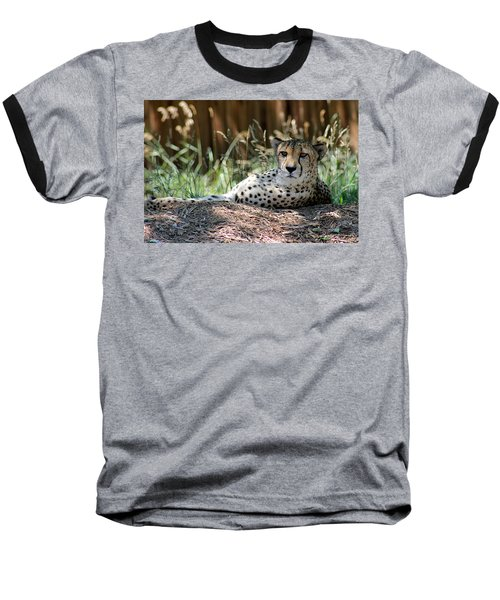 Amber Eyes Baseball T-Shirt