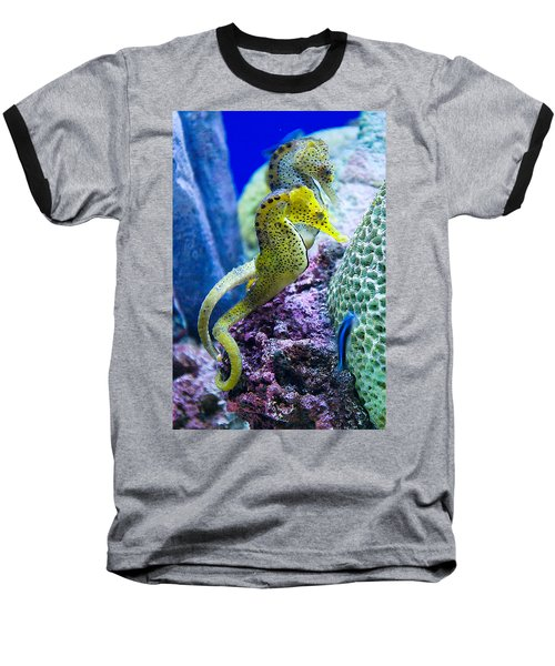 Colorful Seahorses Baseball T-Shirt
