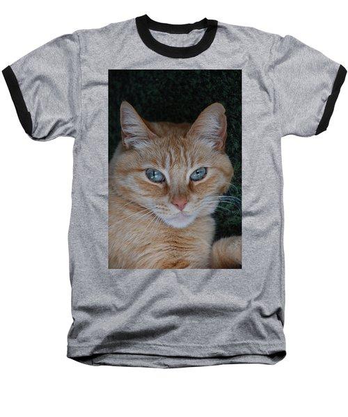 Fat Cats Of Ballard 5 Baseball T-Shirt