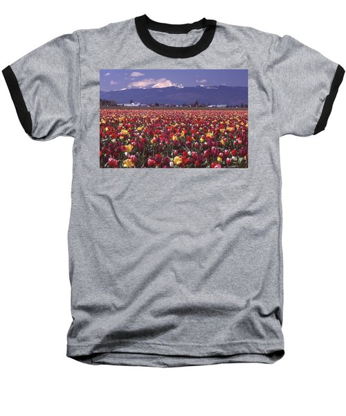 Field Of Tulips And Mount Baker Baseball T-Shirt
