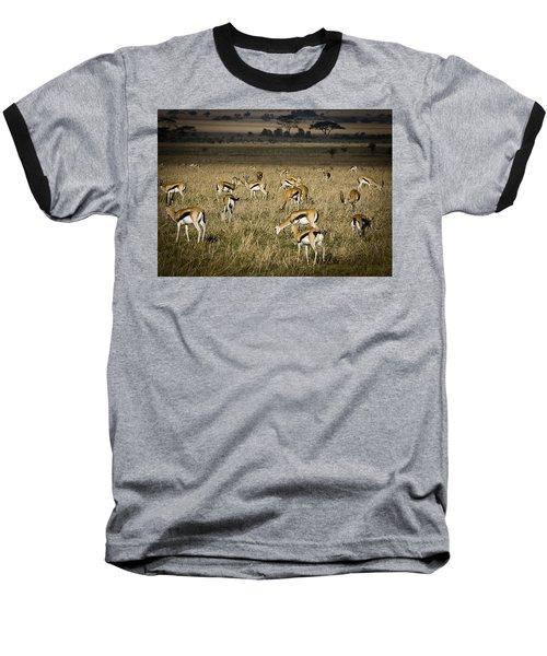 Herd Of Antelope Baseball T-Shirt by Darcy Michaelchuk