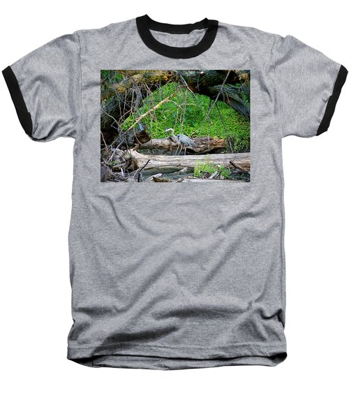 Heron Habitat Baseball T-Shirt by Sue Stefanowicz