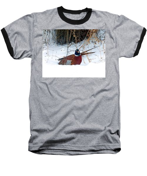 Baseball T-Shirt featuring the photograph Lake Country Pheasant 2 by Will Borden