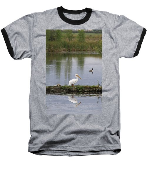 Pelican Reflection Baseball T-Shirt by Alyce Taylor