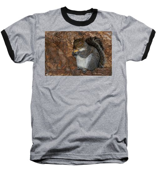 Baseball T-Shirt featuring the photograph Squirrell by Pedro Cardona