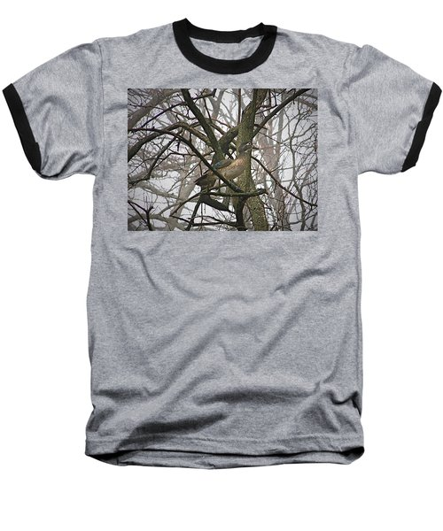 Wood Duck Baseball T-Shirt by Sue Stefanowicz