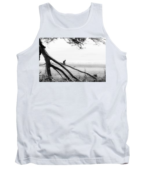 Monkey Alone On A Branch Tank Top by Darcy Michaelchuk