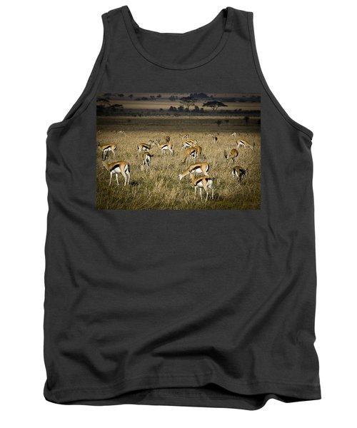 Herd Of Antelope Tank Top by Darcy Michaelchuk