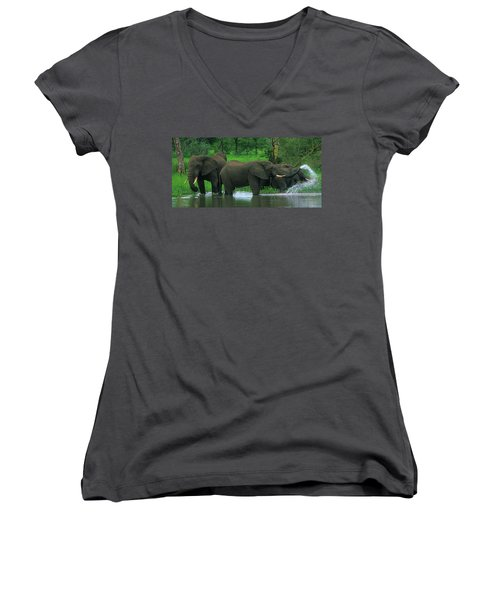 Elephant Shower Women's V-Neck T-Shirt