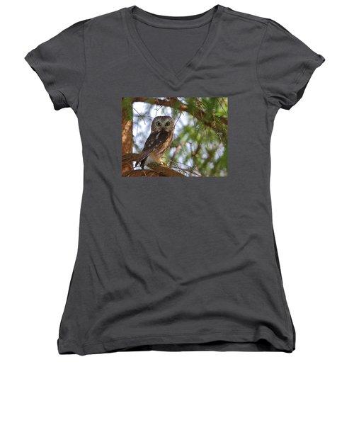 Saw-whet Owl Women's V-Neck T-Shirt