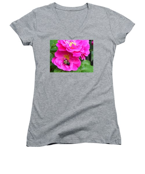 Jc And Bee Women's V-Neck T-Shirt
