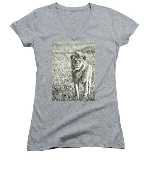 The King Stands Tall Women's V-Neck T-Shirt (Junior Cut) by Darcy Michaelchuk