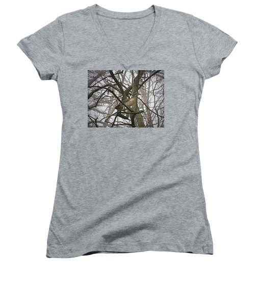 Wood Duck Women's V-Neck T-Shirt (Junior Cut) by Sue Stefanowicz