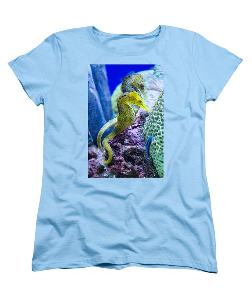 Colorful Seahorses Women's T-Shirt (Standard Cut) by Jim And Emily Bush