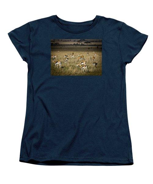 Herd Of Antelope Women's T-Shirt (Standard Cut) by Darcy Michaelchuk