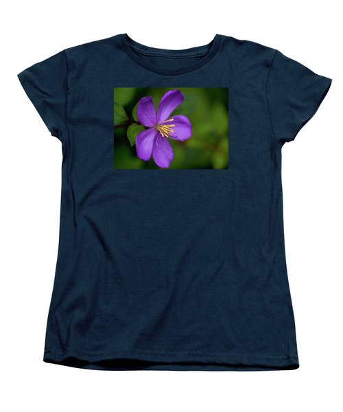 Purple Flower Macro Women's T-Shirt (Standard Cut) by Dan McManus