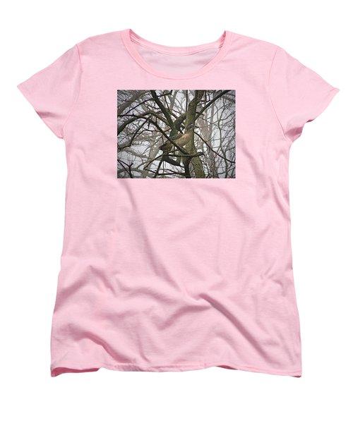 Wood Duck Women's T-Shirt (Standard Cut) by Sue Stefanowicz