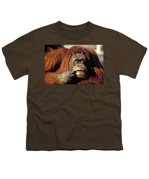 Orangutan  Youth T-Shirt by Garry Gay
