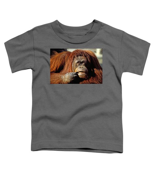 Orangutan  Toddler T-Shirt by Garry Gay