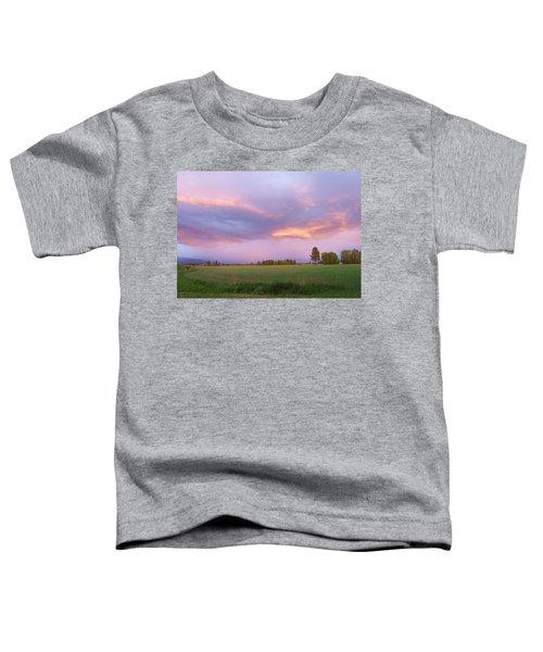 Montana Sunsets 3 Toddler T-Shirt