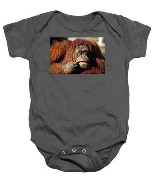 Orangutan  Baby Onesie by Garry Gay