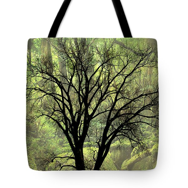 Freaky Tree 2 Tote Bag by Marty Koch