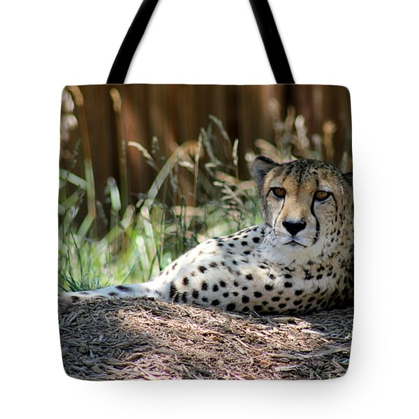 Amber Eyes Tote Bag