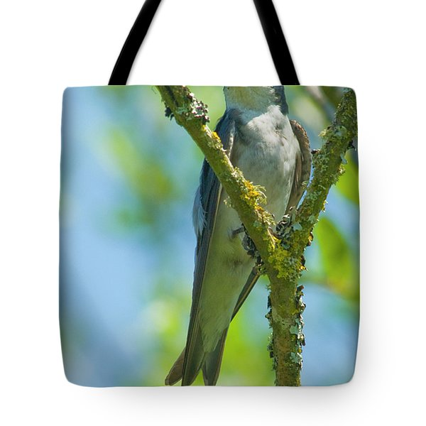 Tote Bag featuring the photograph Bird In Tree by Rod Wiens