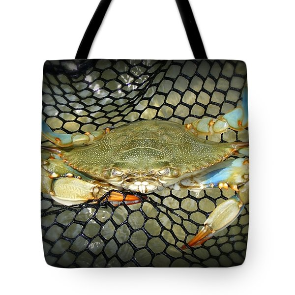 Tote Bag featuring the photograph Blue Crab by Kelly Nowak