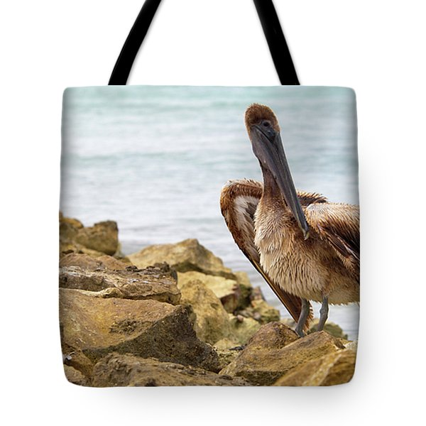 Brown Pelican Tote Bag by Sebastian Musial