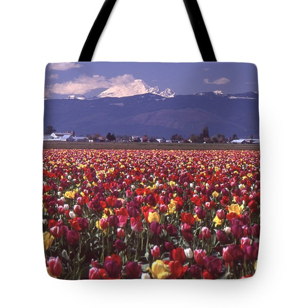 Field Of Tulips And Mount Baker Tote Bag