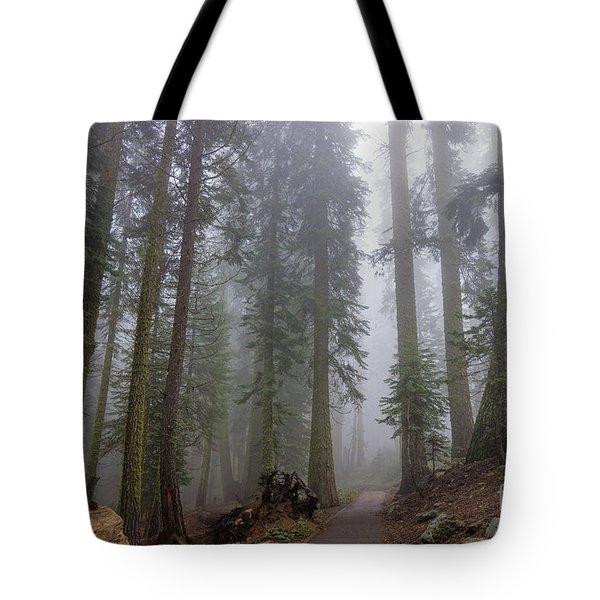 Tote Bag featuring the photograph Forest Walking Path by Peggy Hughes