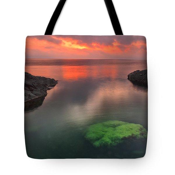 Hidden Green Tote Bag by Evgeni Dinev