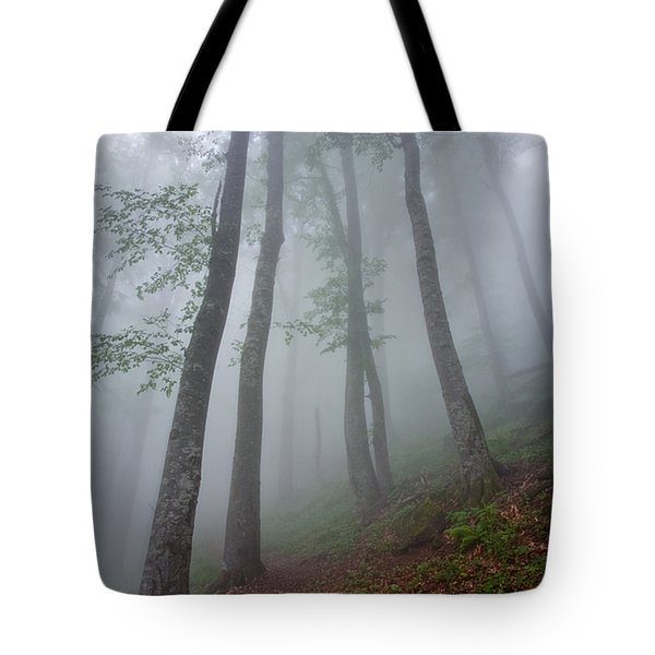 High Forest Tote Bag by Evgeni Dinev