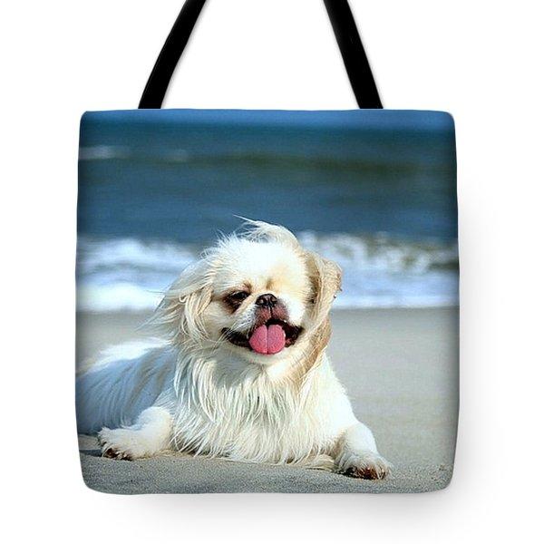 Lifes A Beach Tote Bag by Ania M Milo