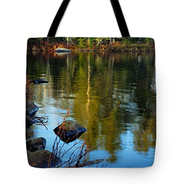 Morning Reflections On Chad Lake Tote Bag by Larry Ricker