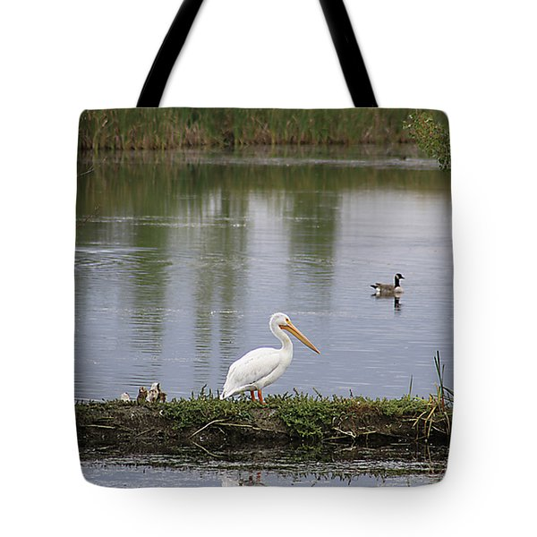 Tote Bag featuring the photograph Pelican Reflection by Alyce Taylor