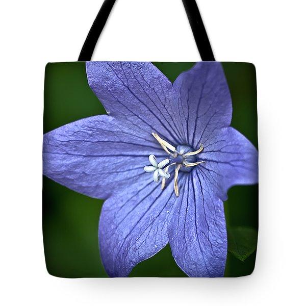 Purple Balloon Flower Tote Bag by  Onyonet  Photo Studios