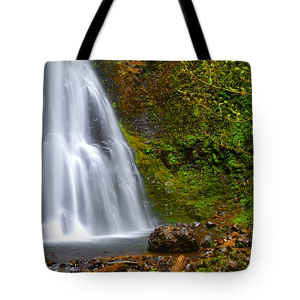 Spring Cascade Tote Bag by Andrea Hazel Ihlefeld