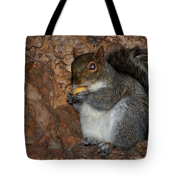 Tote Bag featuring the photograph Squirrell by Pedro Cardona