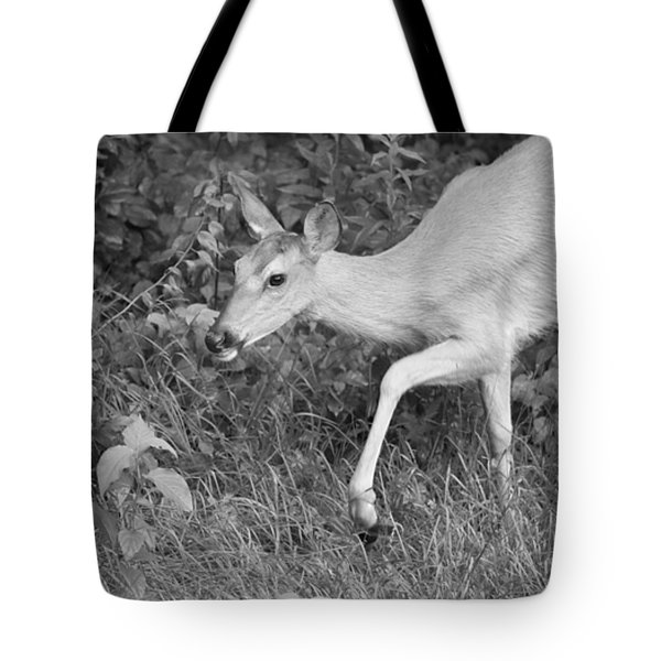Steppin Out Bw Tote Bag by Karol Livote