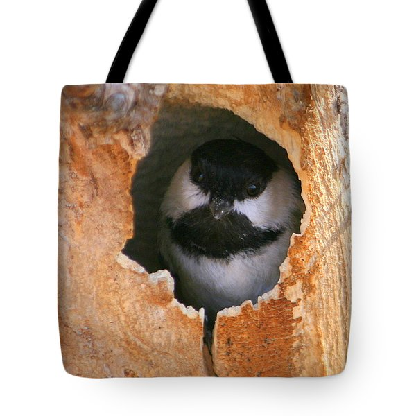 This Is My House Tote Bag