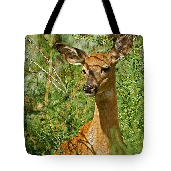 Whitetail Doe Painterly Tote Bag by Ernie Echols