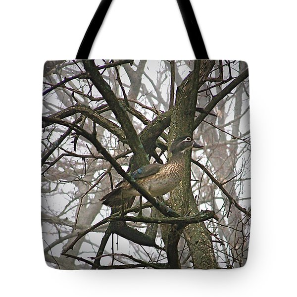 Wood Duck Tote Bag by Sue Stefanowicz